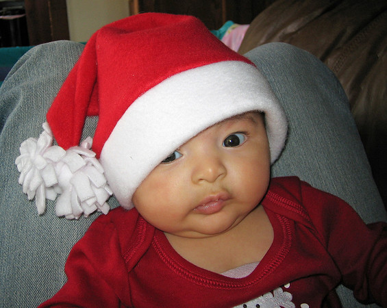 Trillian Mira in a Santa Hat