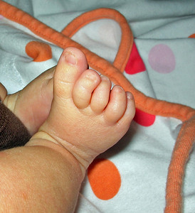 Trillian's baby feet